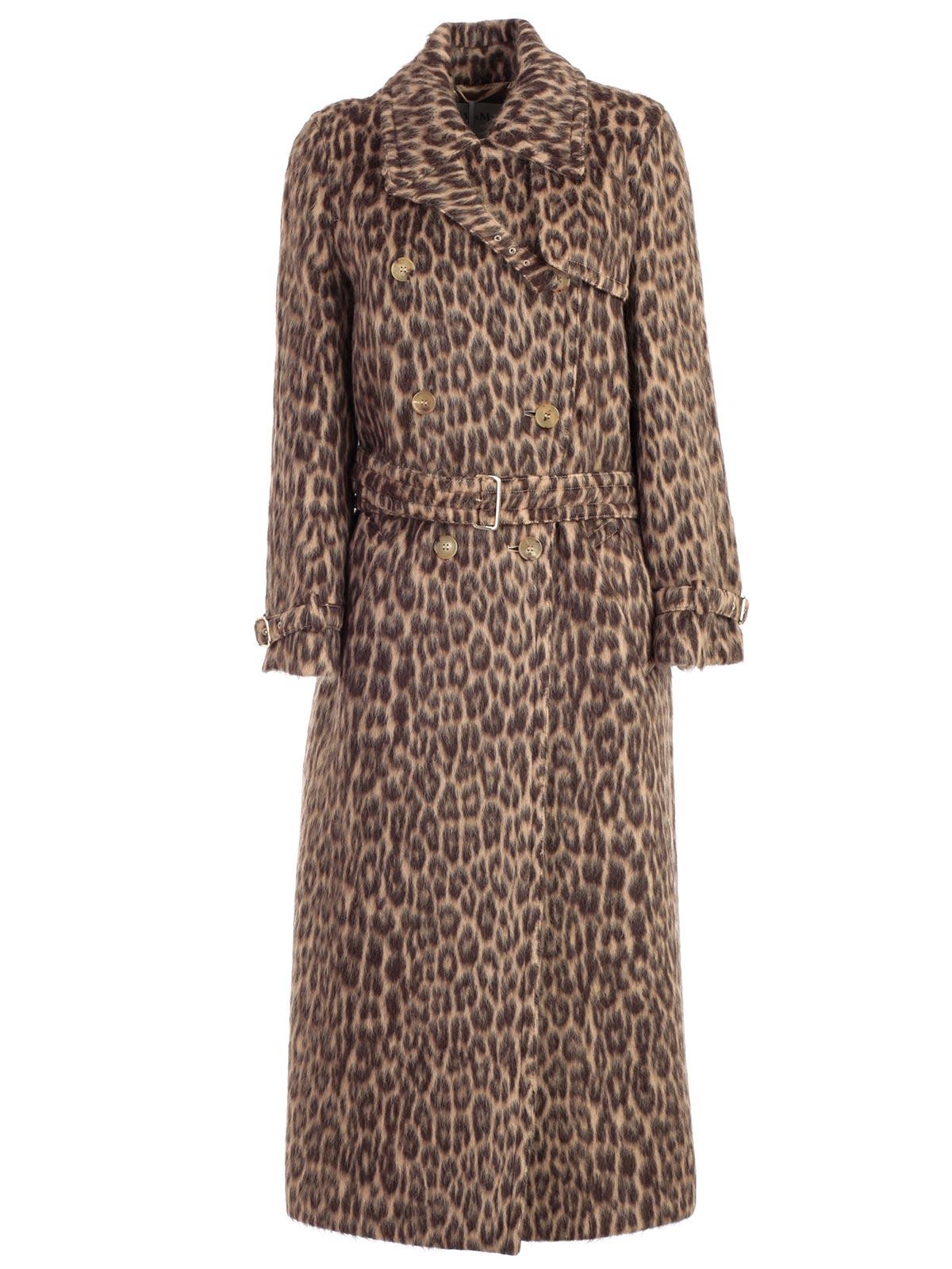 Picture of Max Mara Coat